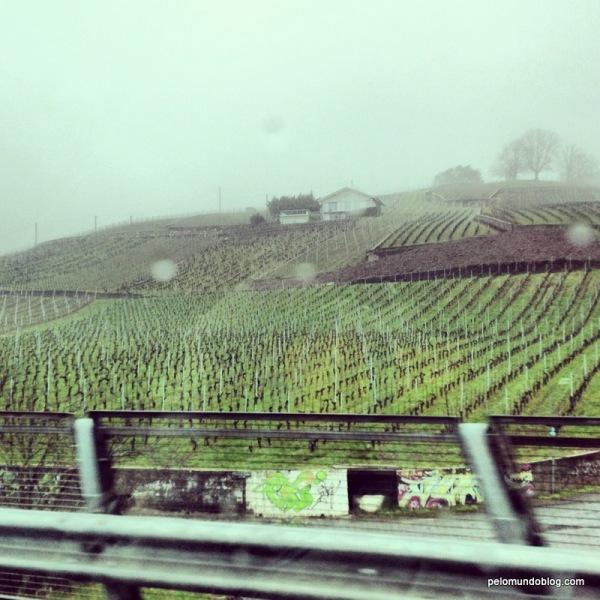 No caminho de Zermatt para Broc, passagem pelos vinhedos da Suíça.