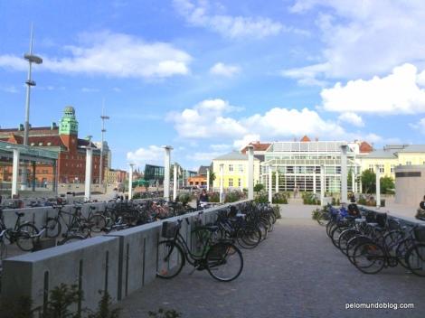 Muitas bicicletas aqui também.