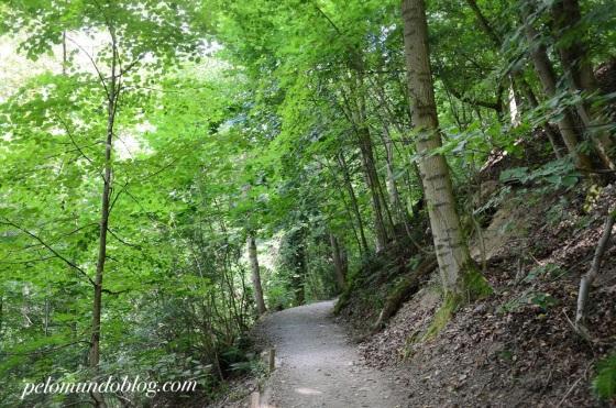 Caminhando até a torre pela Floresta Negra.
