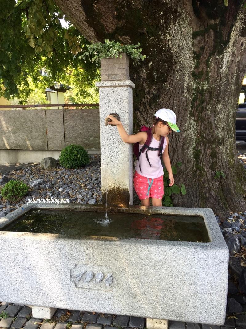 No caminho para a Läderach, uma fonte para a gente se refrescar. Ainda bem, porque neste dia estava bem quente.